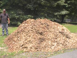 A typical dumped load of wood chip mulch is 8-10 cubic yards